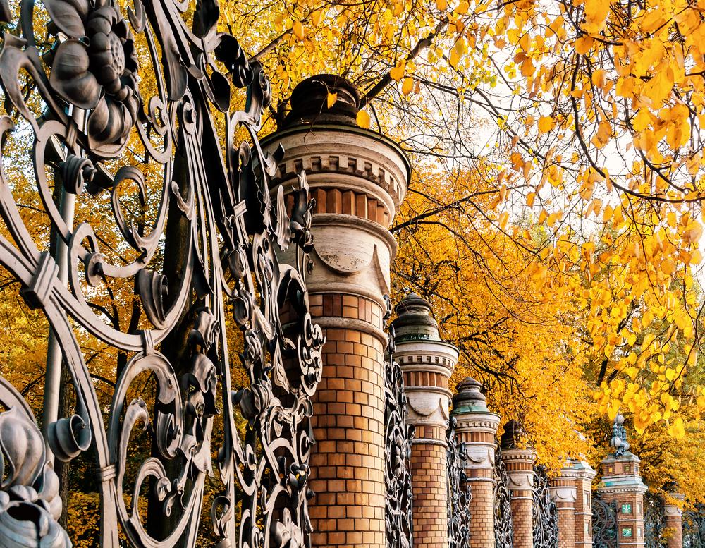 Вид на парк в Санкт-Петербурге осенью